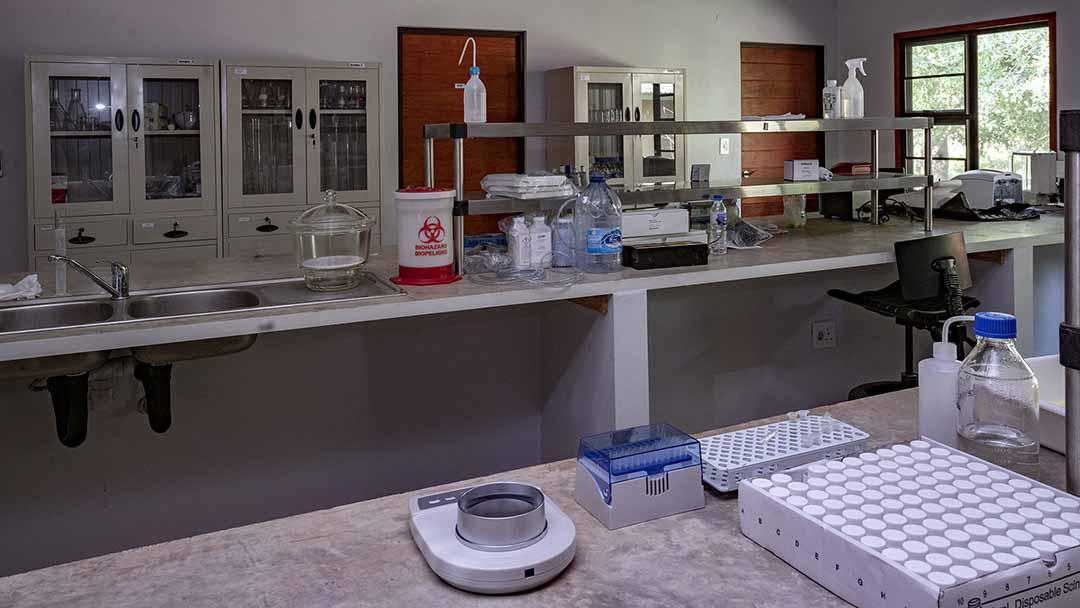 EO Wilson Lab